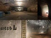 Der historische Weingewölbekeller wird als Flaschenweinlager und Wein-Erlebnis-Gewölbe ebenfalls wieder seine urpsrüngliche Aufgabe bekommen