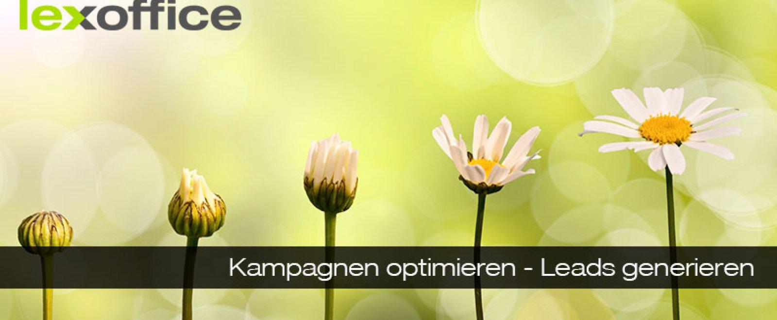 Online-Marketing: Kampagnen optimieren - Leads generieren