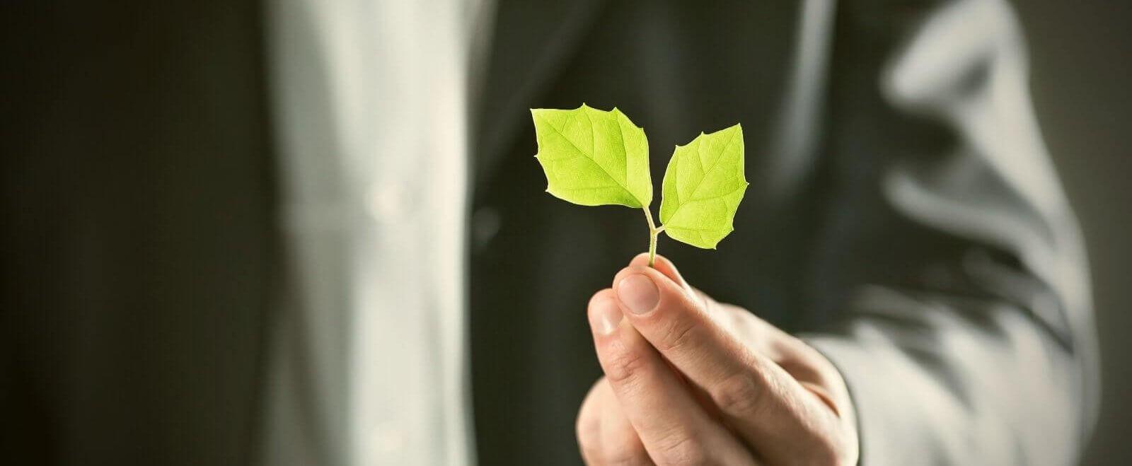 Die nachhaltige Steuerkanzlei